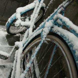 Snowcycle III
