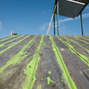 Green Roof I