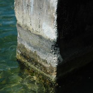 Key Largo Pier
