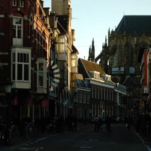 Urecht Street