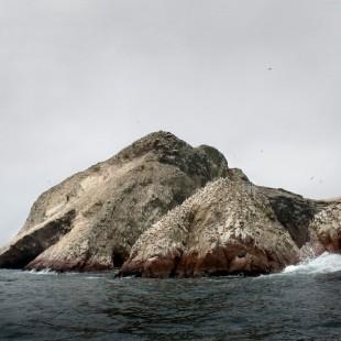 Wild Coast II