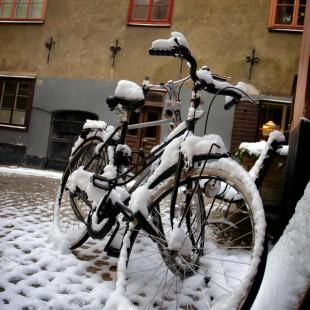 Snowcycle V